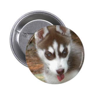 XX- Cute Siberian Husky Puppy Dog Pinback Button