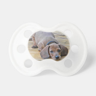 XX- Dachsund Puppy Dog Photography Pacifier