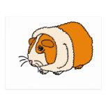 XX dibujo animado lindo del conejillo de Indias Postal