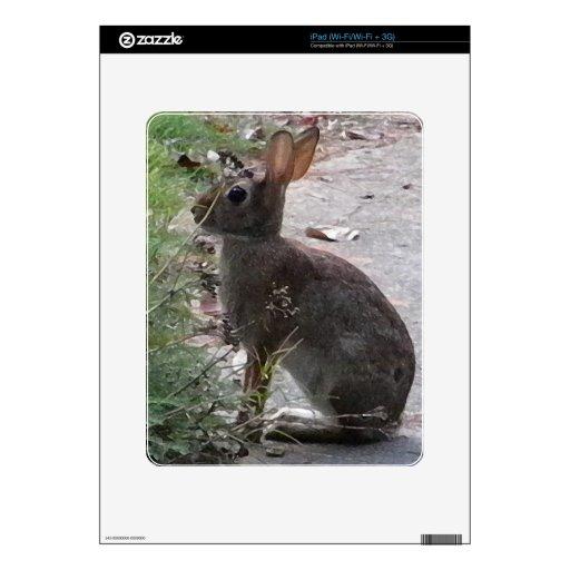 XX diseño de la fotografía del conejo de conejito Calcomanía Para iPad
