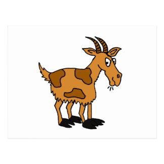 XX- Funny Cartoon Goat Postcard