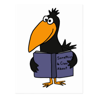 XX- Funny Crow Reading Book Cartoon Postcard