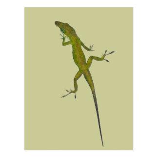 XX- Green Chamelon Lizard Postcard