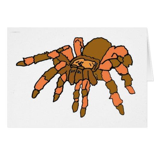XX- Hilarious Tarantula Spider Card