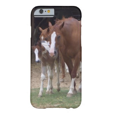 XX- Horse Photography Art Design Barely There iPhone 6 Case