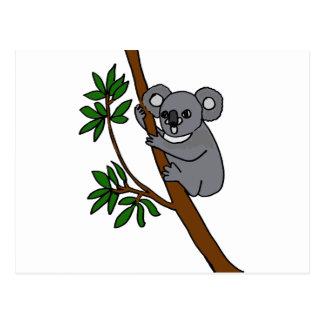 XX oso de koala lindo Postal
