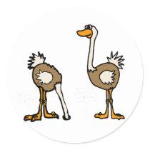 XX- Ostriches in Sand Classic Round Sticker