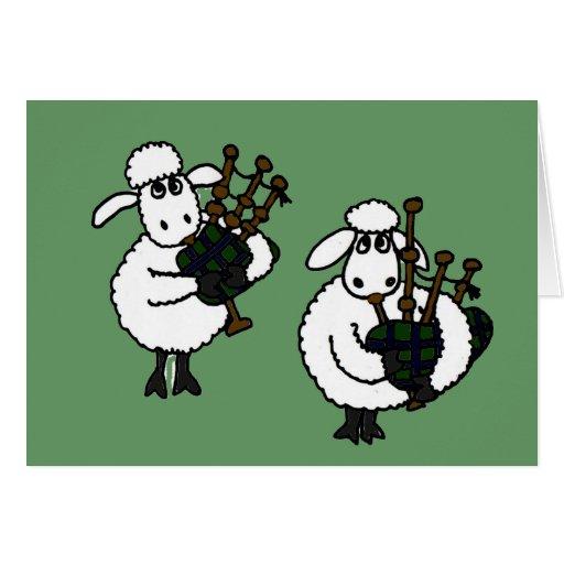 XX ovejas impresionantes que tocan las gaitas Tarjeta De Felicitación
