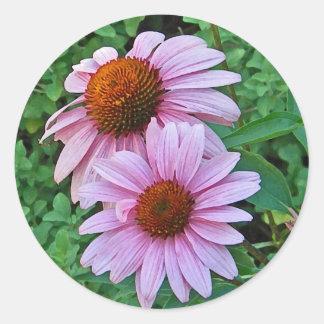 XX- Pink Coneflowers Classic Round Sticker