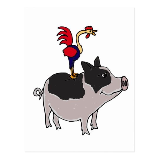 XX- Rooster on a Pot Bellied Pig Cartoon Postcard
