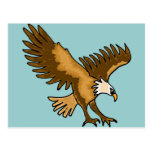 XX- Soaring Eagle Post Card