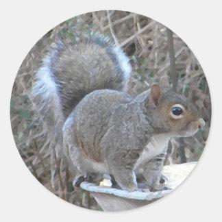 XX- Squirrel in a Birdbath Photography Classic Round Sticker