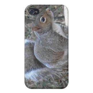 XX- Squirrel in a Birdbath Photography iPhone 4 Case