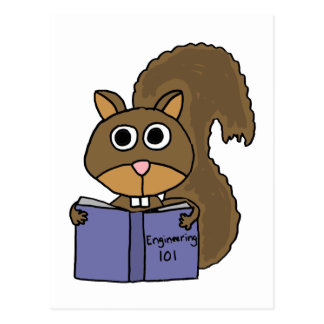 XX- Squirrel Reading Book Cartoon Postcard