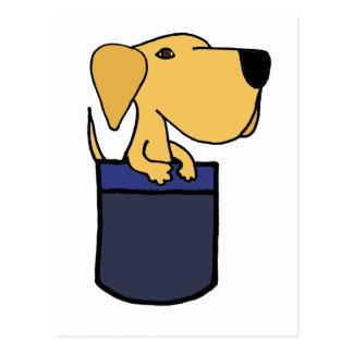 XX- Yellow Labrador Dog in a Pocket Postcard