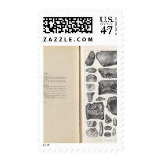 XXII Typothorax, Coprolites, Saurians Timbre Postal