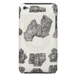 XXIX Diplocynodus sphenops Cope iPod Case-Mate Case