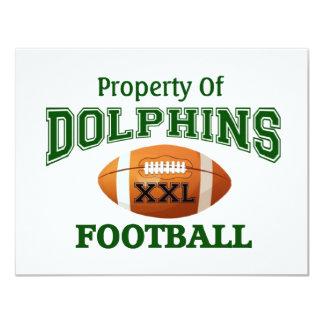 XXL Dolphins Card