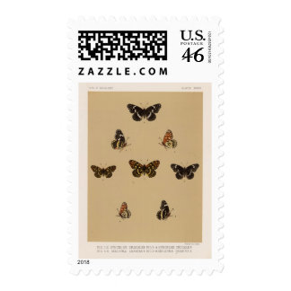 XXXVII Synchloe, Melitaea Stamps