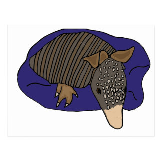 XY- Baby Armadillo on a Pillow Design Postcard