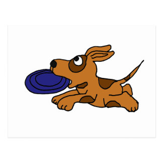 XY- Funny Brown Puppy Dog Catching Frisbee Post Cards