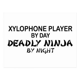 Xylophone Deadly Ninja by Night Postcard
