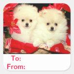 Y de los pegatinas de Pomeranian de la etiqueta de
