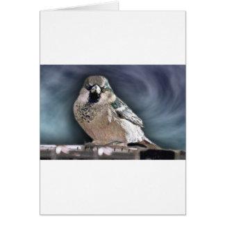 Y su pájaro puede cantar tarjeton