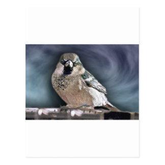 Y su pájaro puede cantar postal