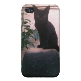Yabba Cat iPhone 4 Cover