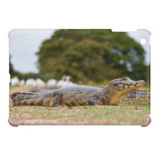 yacare caiman cover for the iPad mini