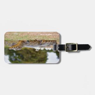 yacare caiman tags for luggage