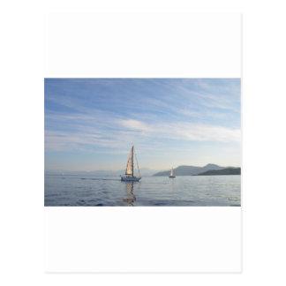 Yacht Shady Lady Postcard