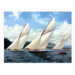 Yachts and a small steam vessel postcard