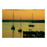 Yachts at Sunset Posters