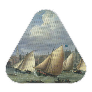 Yachts of the Cumberland Fleet starting Bluetooth Speaker