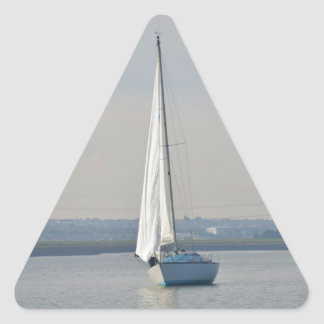 Yachts Racing In Light Airs Triangle Sticker