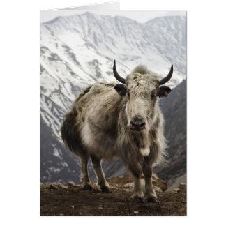Yacs en Nepal Tarjeta De Felicitación