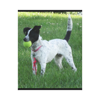 Yahtzee The Dog with Ball Canvas Print