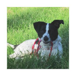 Yahtzee The Dog with Leash Canvas Print