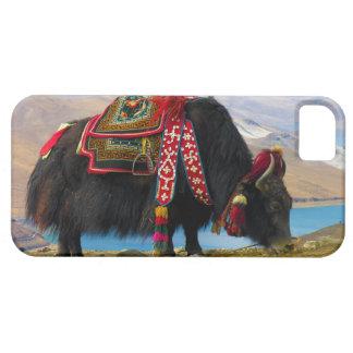 Yak Bos grunniens Bos mutus at Yamdrok Lake iPhone 5 Cover