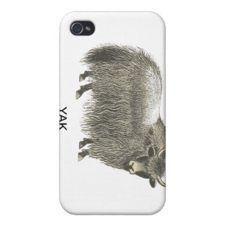 Yak iPhone Case iPhone 4 Case