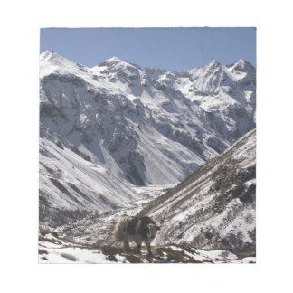 Yak near Mt. Jhomolari,  Jangothang Jigme Dorji Notepad
