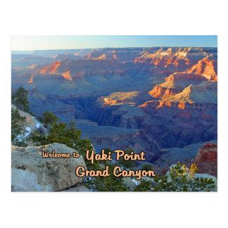 Yaki Point At The Grand Canyon Postcard