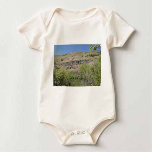 Yakima River Canyon Baby Creeper