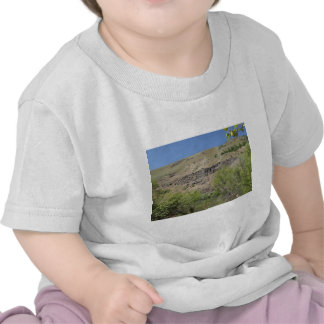 Yakima River Canyon Tee Shirts