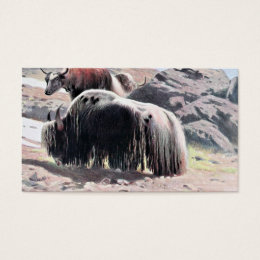 Yaks Vintage Painting Business Card