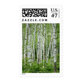 Yakumo-mura, Nagano Prefecture, Central Honshu Postage Stamp