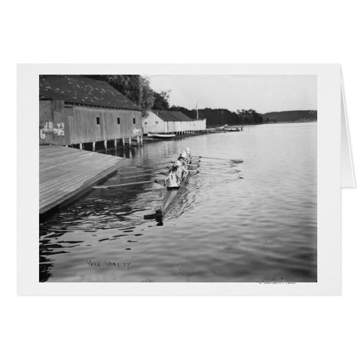 Yale University Rowing Crew Team Photograph Cards