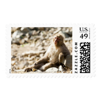Yamanouchi, Chubu, Nagano Prefecture, Japan 2 Stamp